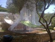 Hammock covered with net against insect